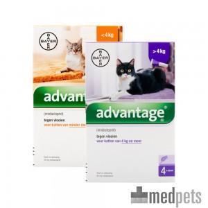 Produktbild von Advantage Katze