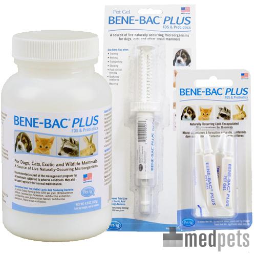 Produktbild von Bene Bac Plus Pet