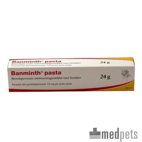 Produktbild von Banminth Paste Hund