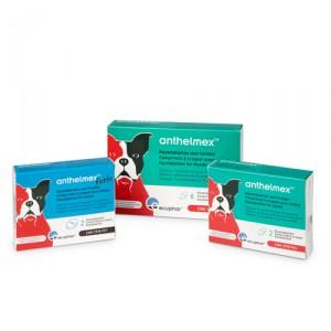 Anthelmex Forte 2 tabletten