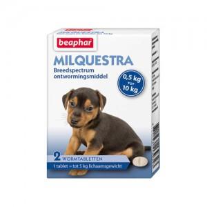 Beaphar Milquestra Kleine hond/puppy - 2 tabletten