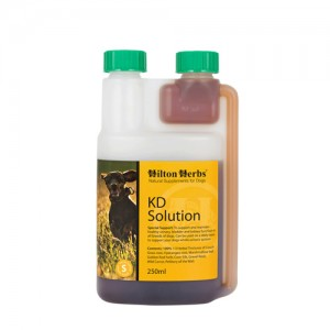 Hilton Herbs KD Solution for Dogs - 250 ml