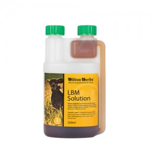 Hilton Herbs LBM Solution for Dogs - 500 ml