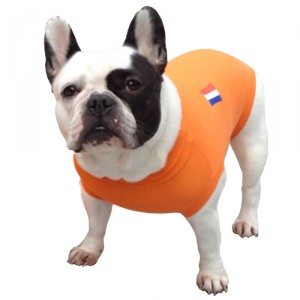 Medical Pet Shirt Hond Oranje - S
