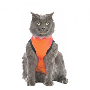 Medical Pet Shirt Kat Oranje - XXS