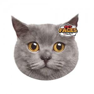 Pet Faces Cat - Britse korthaar