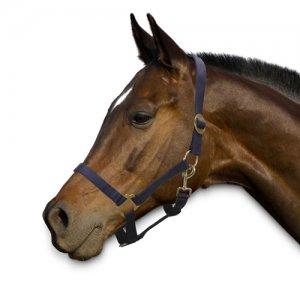 Sectolin Halster Economic - Pony - Navy
