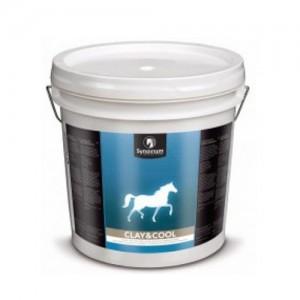 Synovium Clay & Cool - 20 kg